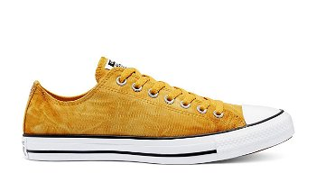 Converse Chuck Taylor All Star Low 170859C